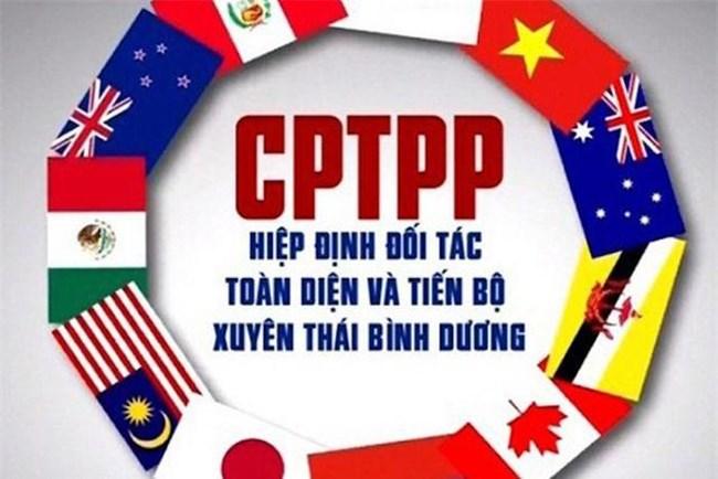 Hai năm thực thi CPTPP - Lợi ích thực tế và tiềm năng chưa được khai phá (08/04/2021)