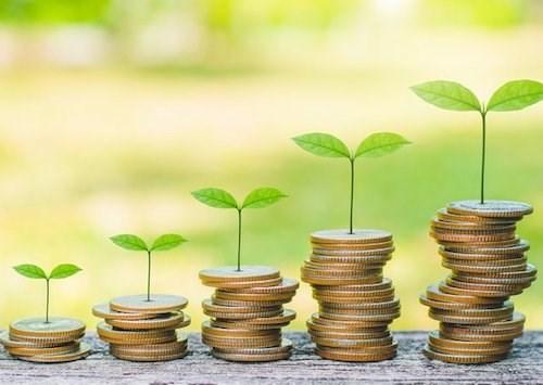 Cam kết trách nhiệm môi trường-xã hội của các ngân hàng đối với các chủ đầu tư còn mờ nhạt (28/04/2021)