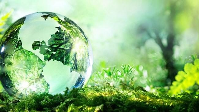 Thu hút đầu tư có chọn lọc vì môi trường (19/05/2021)