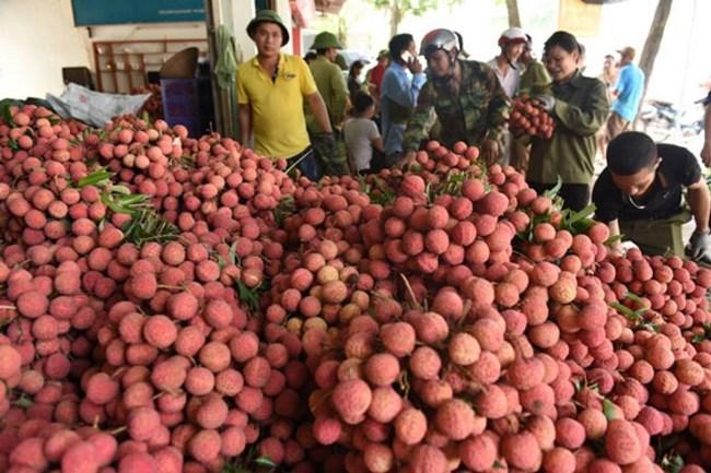 QLTT Bắc Giang tích cực hỗ trợ tiêu thụ nông sản cho nông dân vùng dịch (1/6/2021)