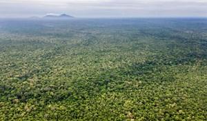 Mỹ dừng viện trợ cho dự án bảo vệ khu bảo tồn thiên nhiên lớn nhất tại Campuchia (18/06/2021)