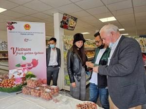 THỜI SỰ 6H SÁNG 20/06/2021: Giá cạnh tranh, vải thiều Việt Nam tràn đầy cơ hội chinh phục thị trường Hà Lan