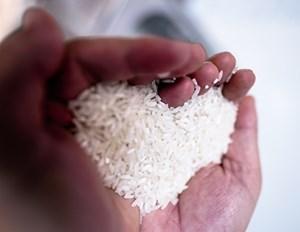 Người phụ nữ lấy tiền dưỡng già để mua gạo từ thiện (11/6/2021)