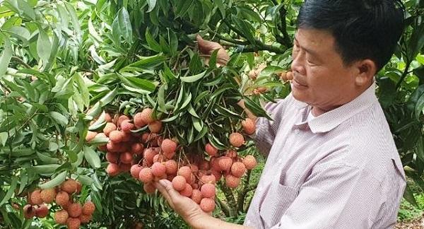 Chuyên nghiệp hóa để nâng cao chất lượng chuỗi giá trị sản phẩm nông nghiệp trong dịch Covid19 ( 27/06/2021)