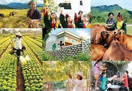 Chương trình mục tiêu quốc gia giảm nghèo và an sinh xã hội bền vững giai đoạn 2021 - 2025