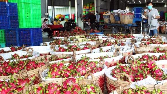 Chung sức hỗ trợ, tránh đứt gãy chuỗi tiêu thụ nông sản (13/9/2021)