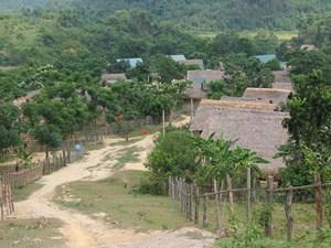 Loay hoay giấc mơ Đan Lai: Đề án thất bại – 15 năm, nghèo vẫn hoàn nghèo (20/09/2021)