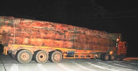 Theo dòng thời sự ngày 06/01/2015: Xử lý xe quá khổ, quá tải ở Hà Tĩnh, Nghệ An còn đầy gian nan
